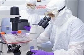 6 سال تا درمان و توسعه داروها از طریق شناسایی عملکرد پروتئینها