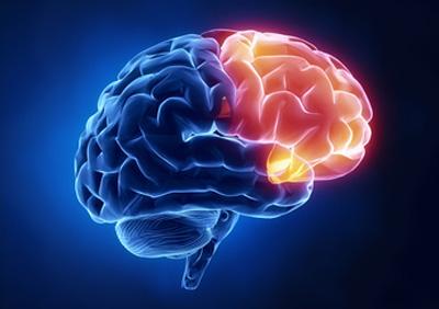 پنج راه حل برای بازیابی مغز