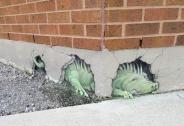 هنر خیابانی با الهام از طبیعت