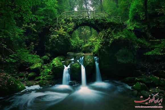 پل هایی از جنس رویا به دنیایی دیگر