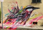 نقاشی های بسیار زیبا از پرندگان برروی دیوار توسط نقاش برزیلی