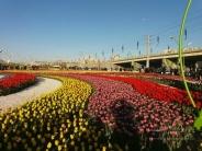 پارک باغ گلهای ارومیه + تصاویر