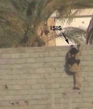 تروریست داعشی در حال فرار