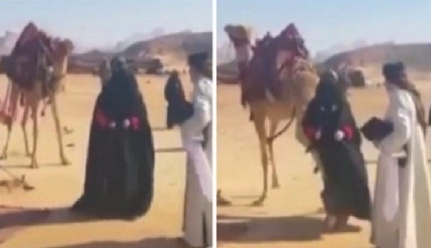 فیلم : لگد خوردن هنرپیشۀ زن از شتر