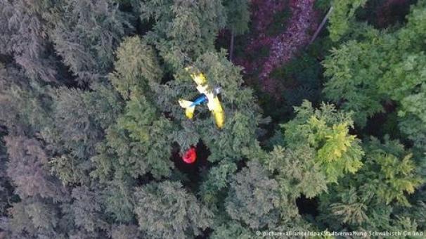 سقوط هواپیما روی درخت و آویزان ماندن خلبان از ارتفاع 30 متری (+عکس)