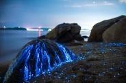 گریه سنگها در سواحل ژاپن (+عکس)
