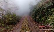 تصاویر طبیعت زیبای جواهر ده در پاییز