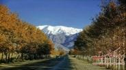 قدیمی ترین عکس رنگی از خیابان ولیعصر تهران
