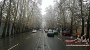 عکس : خیابان زیبای ولیعصر در روز برفی