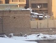 عکس : دیوار کوتاه همسایه برای برف روبی