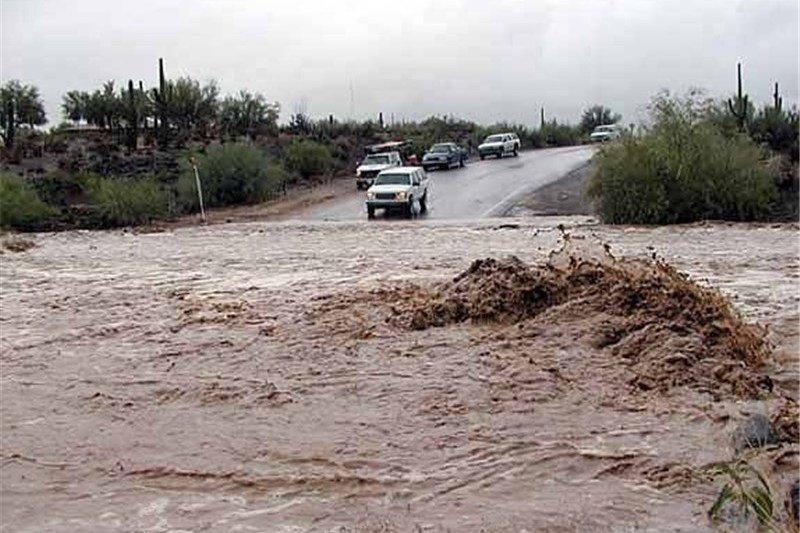 رئیس سازمان امداد و نجات خبر داد اسکان اضطراری 381 نفر در سیلاب دو استان