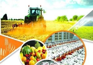 تراز کشاورزی همچنان مثبتتراز پارسال