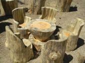 تبدیل هنرمندانهی درختان خشکیده به مبلمان