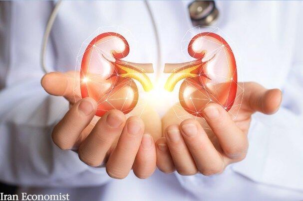 تولید داروی ایرانی بیماری کلیه پلی کیستیک