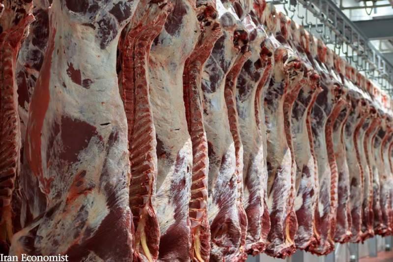 تولید گوشت قرمز کشتارگاهها بیش از ۵.۷ درصد افزایش یافت