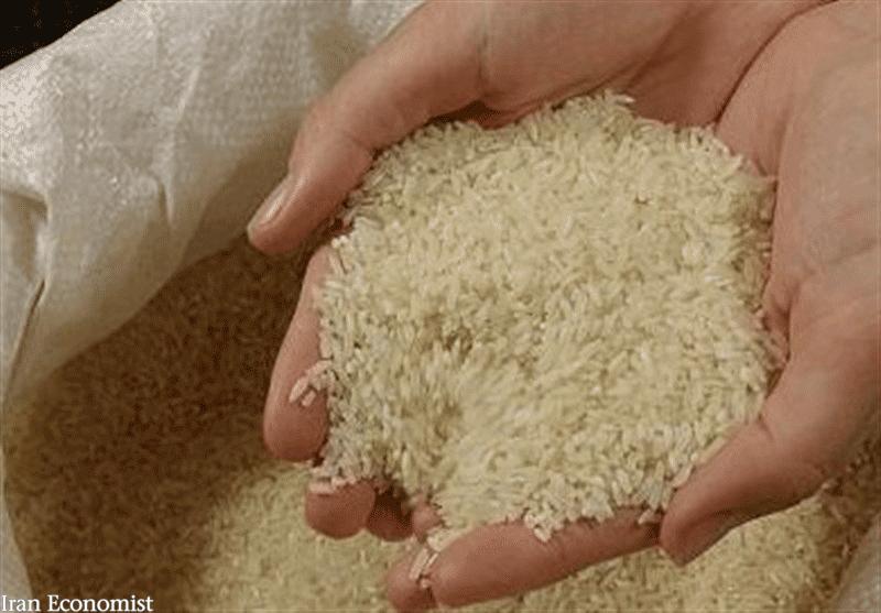 تخصیص ارز دولتی به واردات کالاهای اساسی و برنج