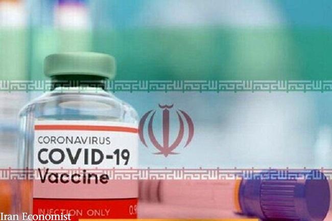 واکسن کووید 19 مشترک ایران و کوبا بدون عوارض